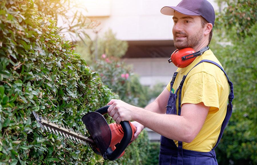 Gartenservice für Privatkunden